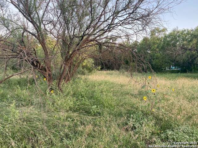 534 Baltzell Ave, San Antonio, TX 78221 (MLS #1549791) :: The Rise Property Group
