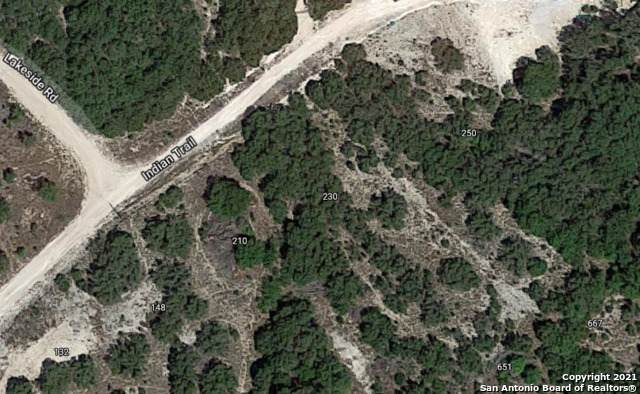250 Indian Trail, Spring Branch, TX 78070 (MLS #1549821) :: NewHomePrograms.com
