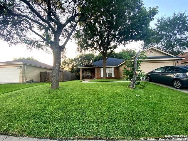 14335 Markham Ln, San Antonio, TX 78247 (MLS #1549849) :: The Mullen Group | RE/MAX Access