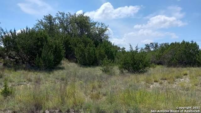 178 Emory Ct, Canyon Lake, TX 78133 (MLS #1549875) :: Tom White Group