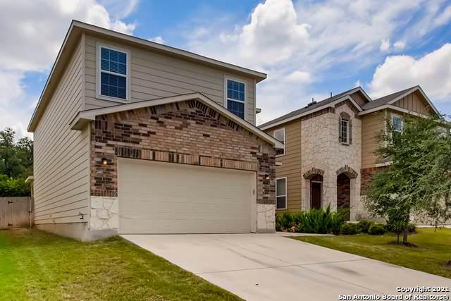 10702 Castello Cyn, San Antonio, TX 78254 (MLS #1549955) :: The Real Estate Jesus Team