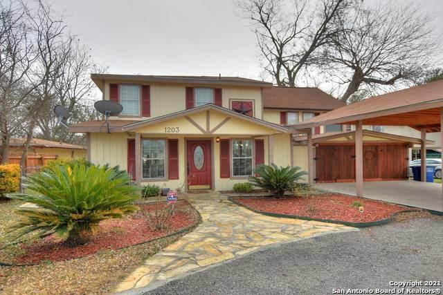 1203 Lone Star Dr, New Braunfels, TX 78130 (MLS #1549973) :: Exquisite Properties, LLC