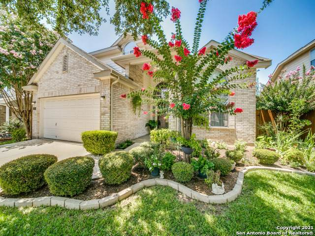 120 Crimson Tree, Cibolo, TX 78108 (MLS #1550042) :: The Gradiz Group