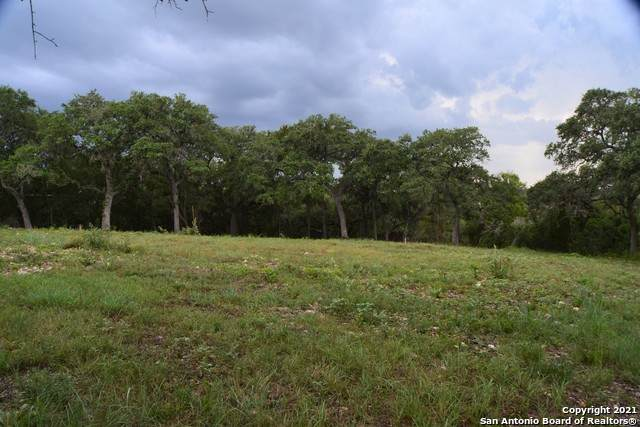 531 River Chase Way, New Braunfels, TX 78132 (MLS #1550051) :: The Castillo Group