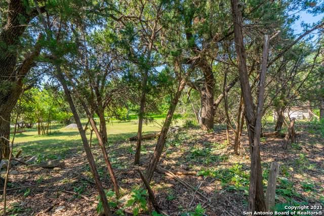 2932 Lakeview Dr, Canyon Lake, TX 78133 (MLS #1550209) :: Concierge Realty of SA