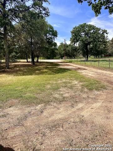 174 Kothmann Rd, La Vernia, TX 78121 (MLS #1550298) :: REsource Realty