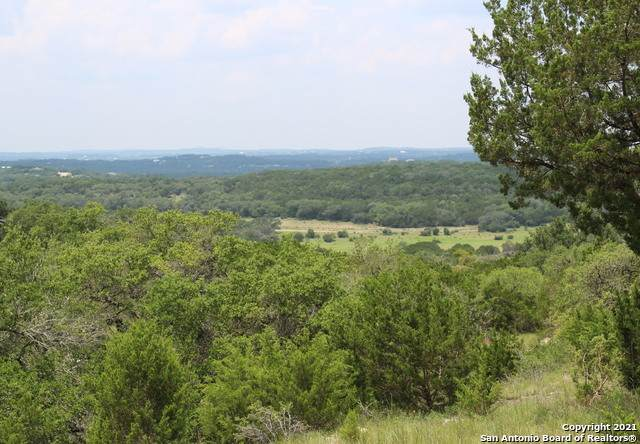 846 Rutherford, Fischer, TX 78623 (MLS #1550478) :: Tom White Group