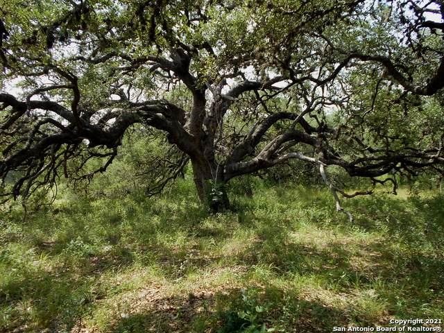 0000 S Guillotine, Von Ormy, TX 78073 (MLS #1550528) :: Tom White Group