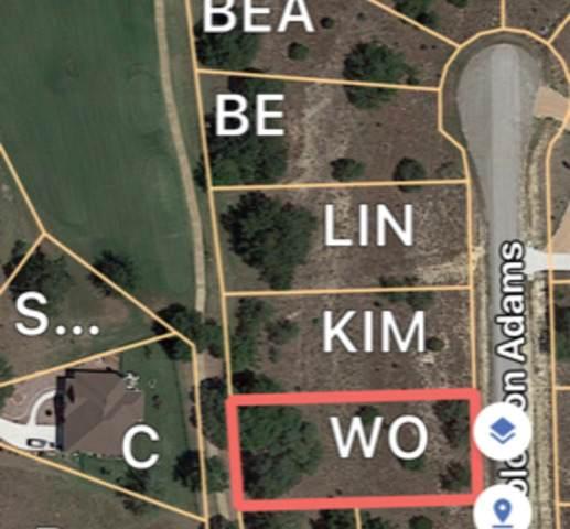 LOT 1050 Solomon Adams, Blanco, TX 78606 (MLS #1550529) :: Tom White Group