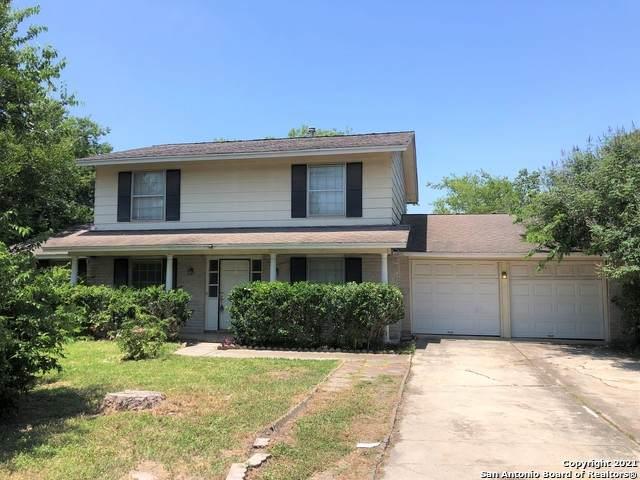 8111 Rain Forest, San Antonio, TX 78239 (MLS #1550590) :: The Real Estate Jesus Team