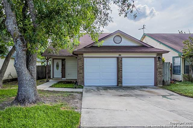 817 Meadow Dale, Converse, TX 78109 (MLS #1550800) :: The Glover Homes & Land Group