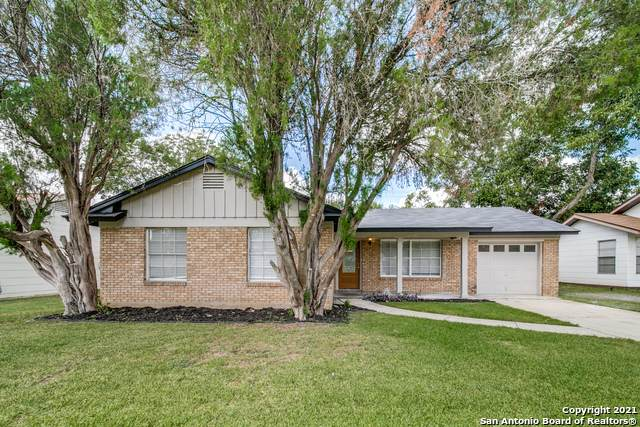 209 Scott Ave, Universal City, TX 78148 (MLS #1550848) :: Alexis Weigand Real Estate Group