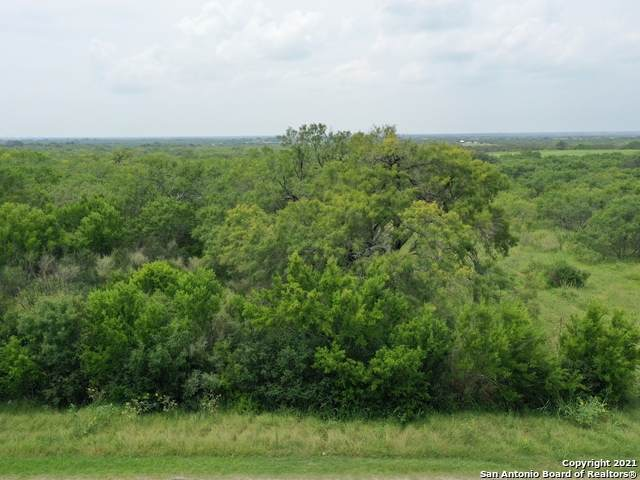 LOT 18 Crow Lane, Adkins, TX 78101 (MLS #1551203) :: EXP Realty