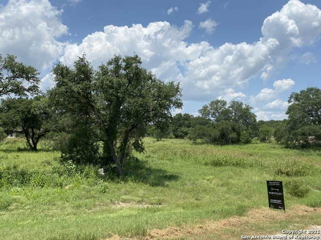 113 Private Road 3702, San Antonio, TX 78253 (MLS #1552584) :: The Glover Homes & Land Group
