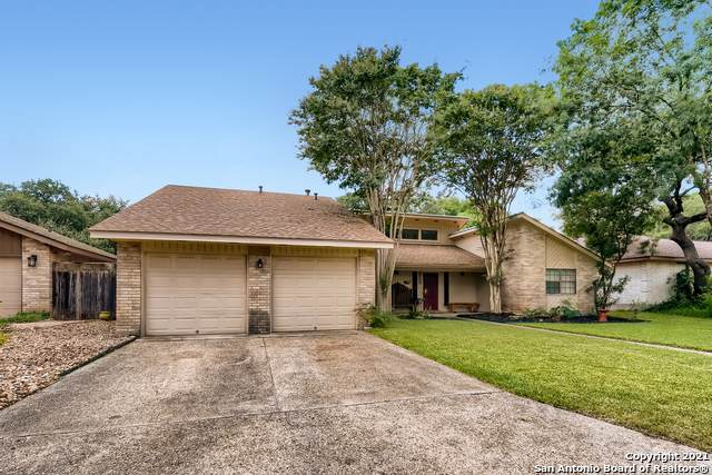 4223 Apple Tree Woods, San Antonio, TX 78249 (MLS #1552685) :: Vivid Realty
