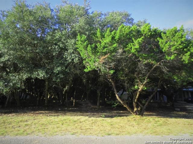 LOT 7 Blue Cove, Lakehills, TX 78063 (MLS #1553130) :: Texas Premier Realty