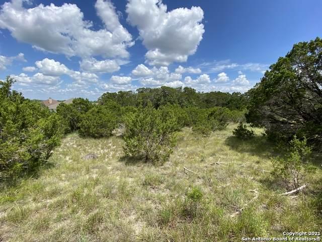 137 Native Pecan, Canyon Lake, TX 78133 (MLS #1553494) :: The Gradiz Group