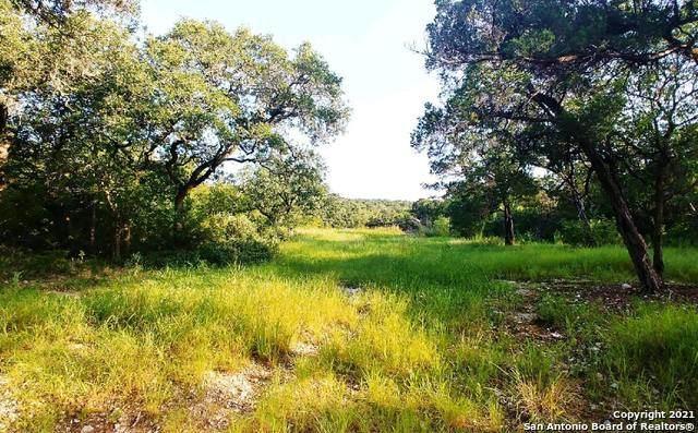 9750 Menchaca Rd, Helotes, TX 78023 (MLS #1553512) :: Santos and Sandberg