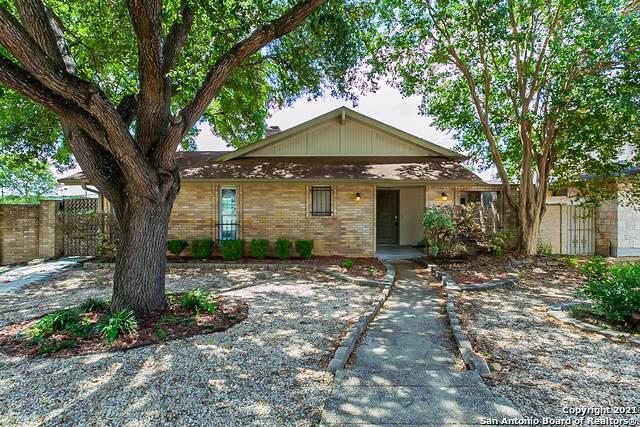 5942 Grandwood Dr, San Antonio, TX 78239 (MLS #1553582) :: Texas Premier Realty