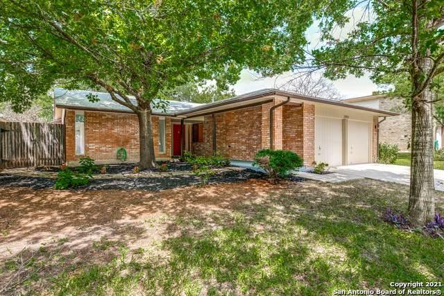 12011 Rose Blossom St, San Antonio, TX 78247 (MLS #1554304) :: Exquisite Properties, LLC