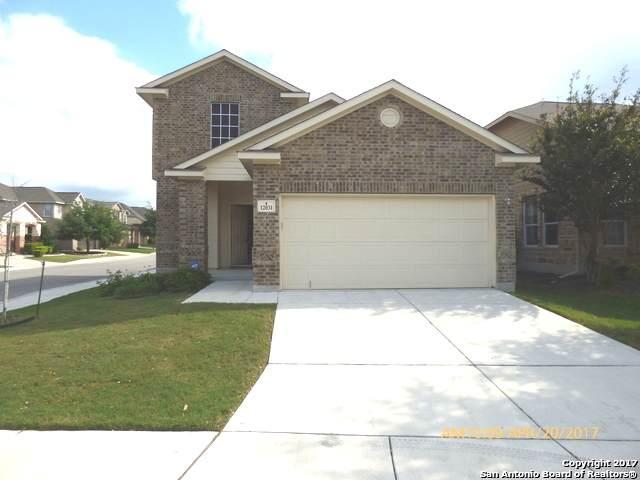 12031 Mill Summit, San Antonio, TX 78254 (MLS #1554773) :: EXP Realty