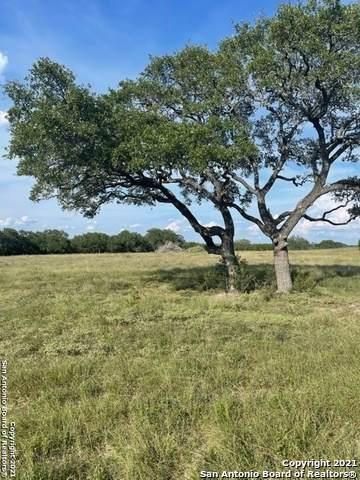 2154 Alto Lago, Canyon Lake, TX 78133 (MLS #1554778) :: Phyllis Browning Company