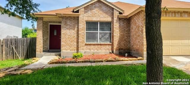 6619 Raintree Frst, San Antonio, TX 78233 (MLS #1554843) :: The Lopez Group