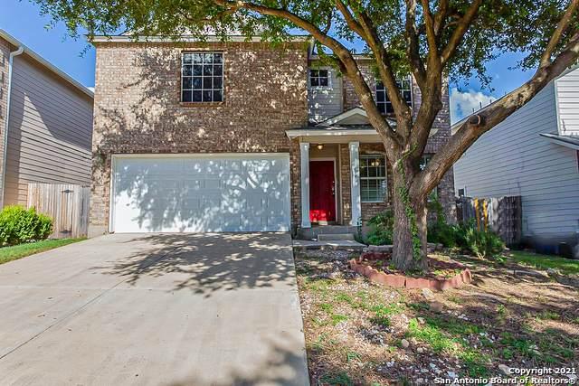 114 Roswell Cyn, San Antonio, TX 78245 (MLS #1555004) :: Real Estate by Design
