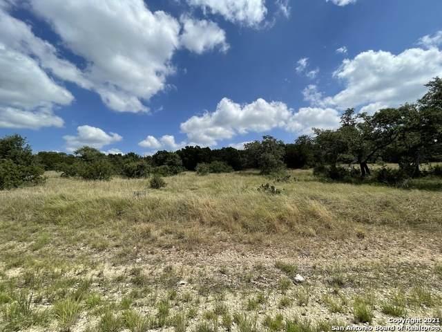 5890 Colin Ridge, New Braunfels, TX 78132 (MLS #1555189) :: Concierge Realty of SA