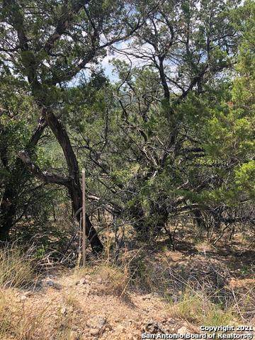 33 Cat Claw Mountain Rd, ConCan, TX 78838 (MLS #1555434) :: Texas Premier Realty