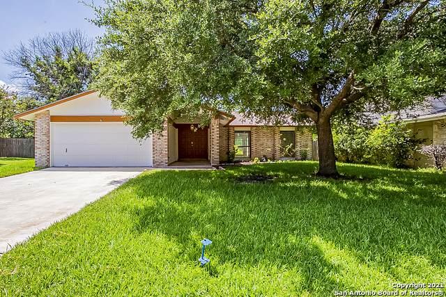 3546 Bunyan St, San Antonio, TX 78247 (MLS #1555548) :: Alexis Weigand Real Estate Group