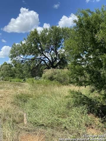 14287 N Interstate 35, Moore, TX 78057 (MLS #1555592) :: Neal & Neal Team