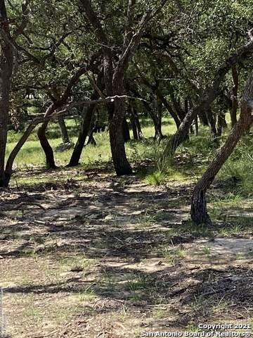 726 Post Oak Ridge Way, Bulverde, TX 78163 (MLS #1555844) :: The Rise Property Group
