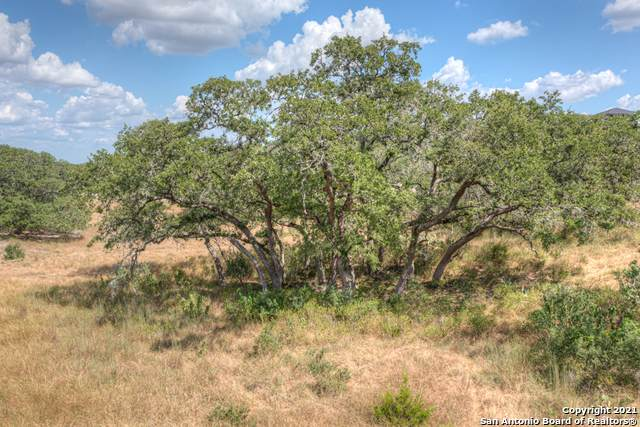 110 Steeplechase, New Braunfels, TX 78132 (MLS #1555966) :: Santos and Sandberg