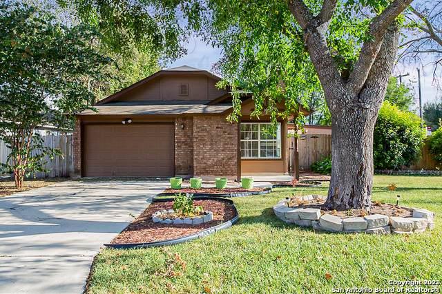 10092 Woodtrail, San Antonio, TX 78250 (MLS #1555974) :: Countdown Realty Team