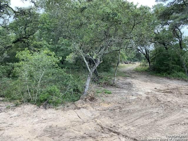 161 Chisum Trail Dr, La Vernia, TX 78121 (MLS #1556116) :: Concierge Realty of SA