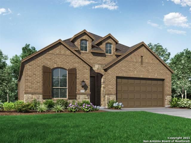 1447 Terrys Gate, New Braunfels, TX 78132 (MLS #1556205) :: The Real Estate Jesus Team