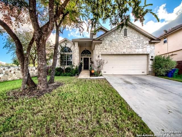 17050 Darlington Run, San Antonio, TX 78247 (MLS #1556280) :: Alexis Weigand Real Estate Group