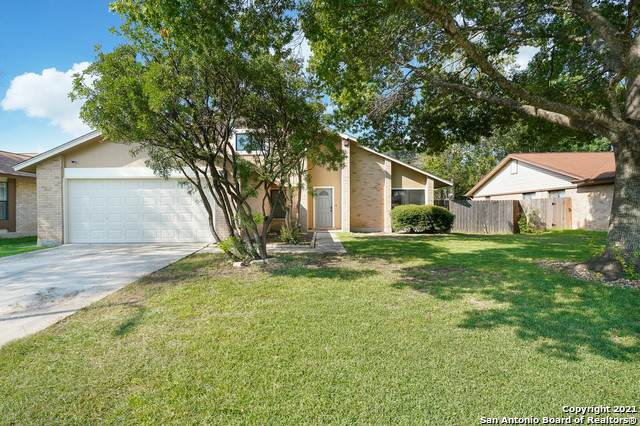 3310 Jenkins Dr, San Antonio, TX 78247 (MLS #1556558) :: Exquisite Properties, LLC