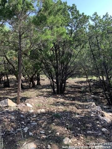 254 Sawgrass, Spring Branch, TX 78070 (MLS #1556594) :: Phyllis Browning Company