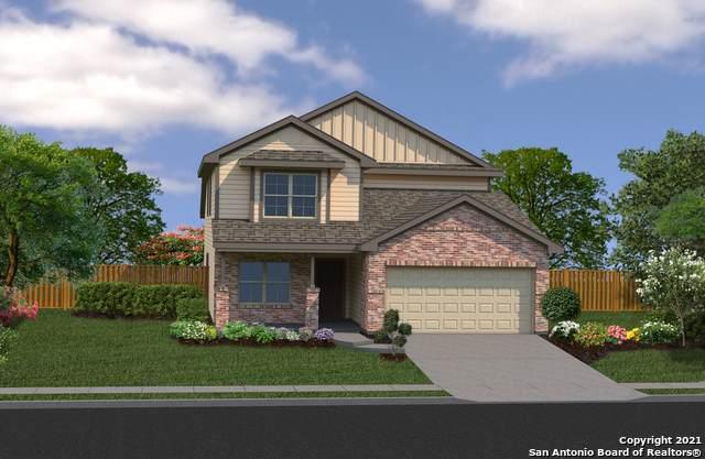 7923 Navarro Mills, San Antonio, TX 78252 (MLS #1556692) :: Vivid Realty