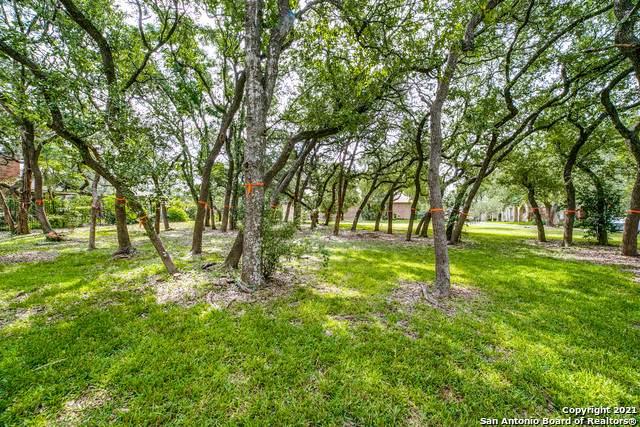 7 Century Glen, San Antonio, TX 78257 (MLS #1556693) :: The Gradiz Group