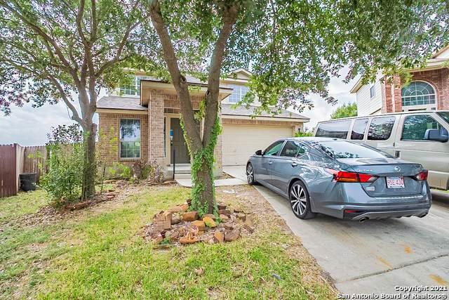 3902 Nuttall Oak Dr, San Antonio, TX 78223 (MLS #1556707) :: Alexis Weigand Real Estate Group