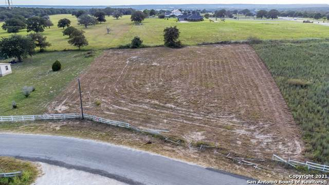 108 Lake View Cir, La Vernia, TX 78121 (MLS #1556834) :: The Rise Property Group