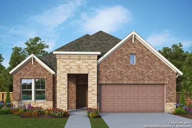 22831 Grande Vista, San Antonio, TX 78261 (MLS #1556944) :: The Gradiz Group