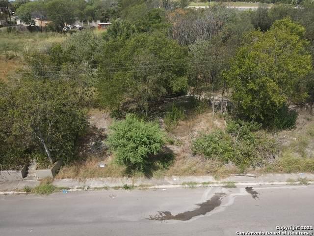 715 Amanda St, San Antonio, TX 78220 (MLS #1557115) :: Texas Premier Realty