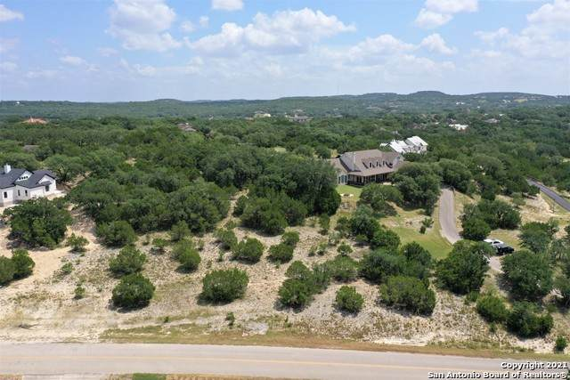 1061 River Way, Spring Branch, TX 78070 (MLS #1557678) :: Phyllis Browning Company