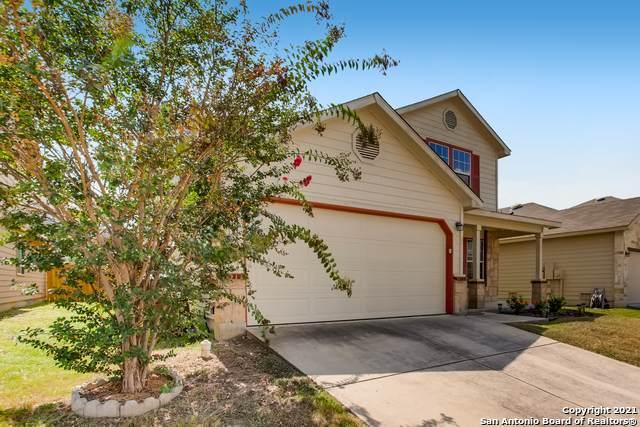 3826 Ashleaf Pecan, San Antonio, TX 78261 (MLS #1557739) :: Texas Premier Realty