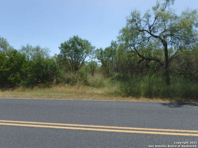 13239 Pearsall Rd - Photo 1