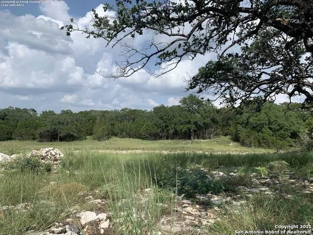 1256 Salt Lick Dr, New Braunfels, TX 78132 (#1557913) :: Zina & Co. Real Estate